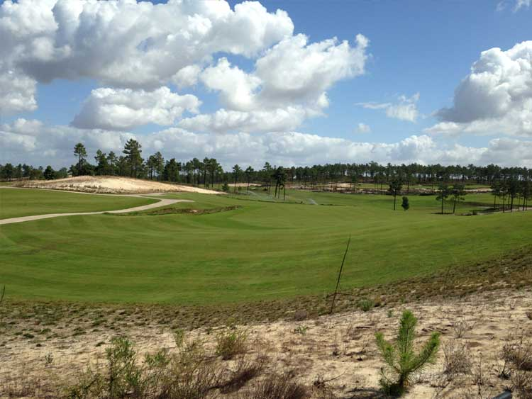 Overseas Golf Course Design & Irrigation